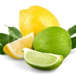 Lemon Lime II - 15ml